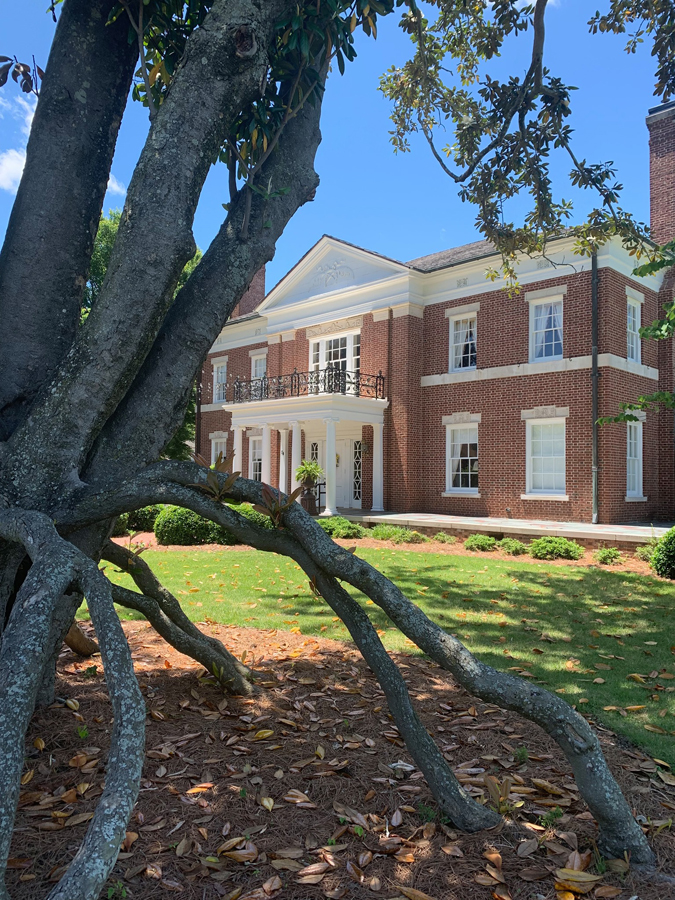 """The """"spider tree"""" is pictured in front of the McRitchie-Hollis Museum."""